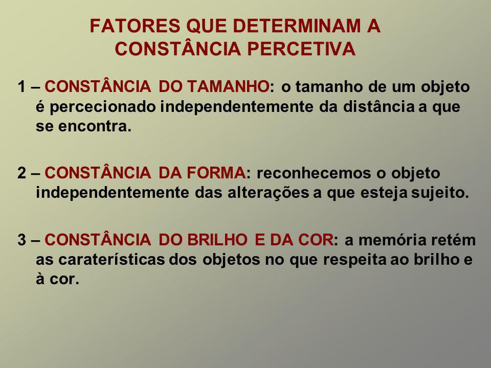 FATORES QUE DETERMINAM A CONSTÂNCIA PERCETIVA