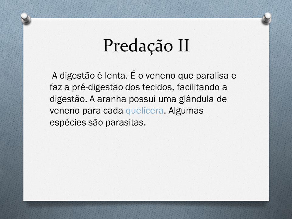 Predação II