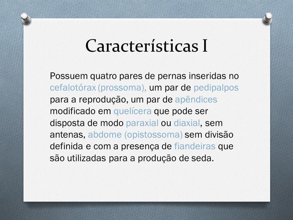 Características I