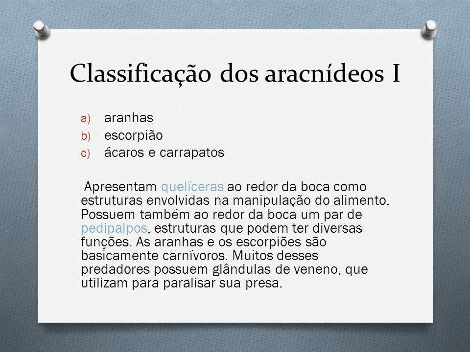 Classificação dos aracnídeos I