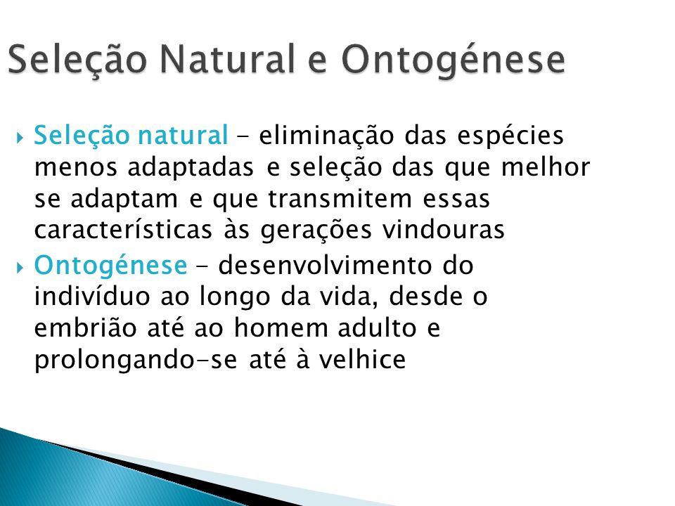 Seleção Natural e Ontogénese