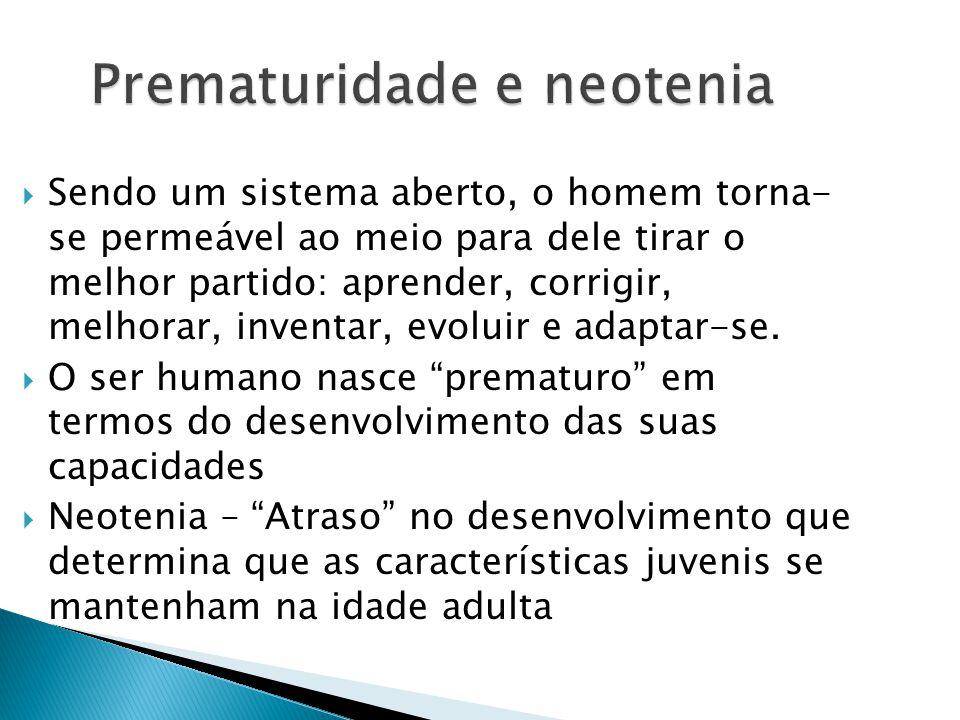 Prematuridade e neotenia
