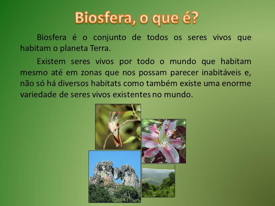 Biosfera, o que é Biosfera é o conjunto de todos os seres vivos que habitam o planeta Terra.