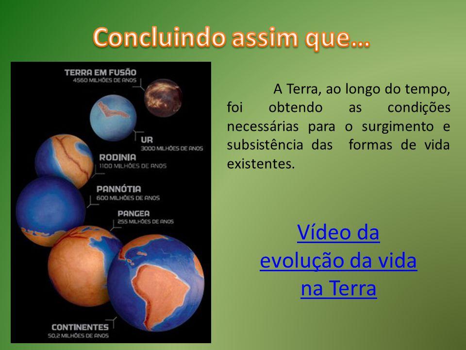 Vídeo da evolução da vida na Terra