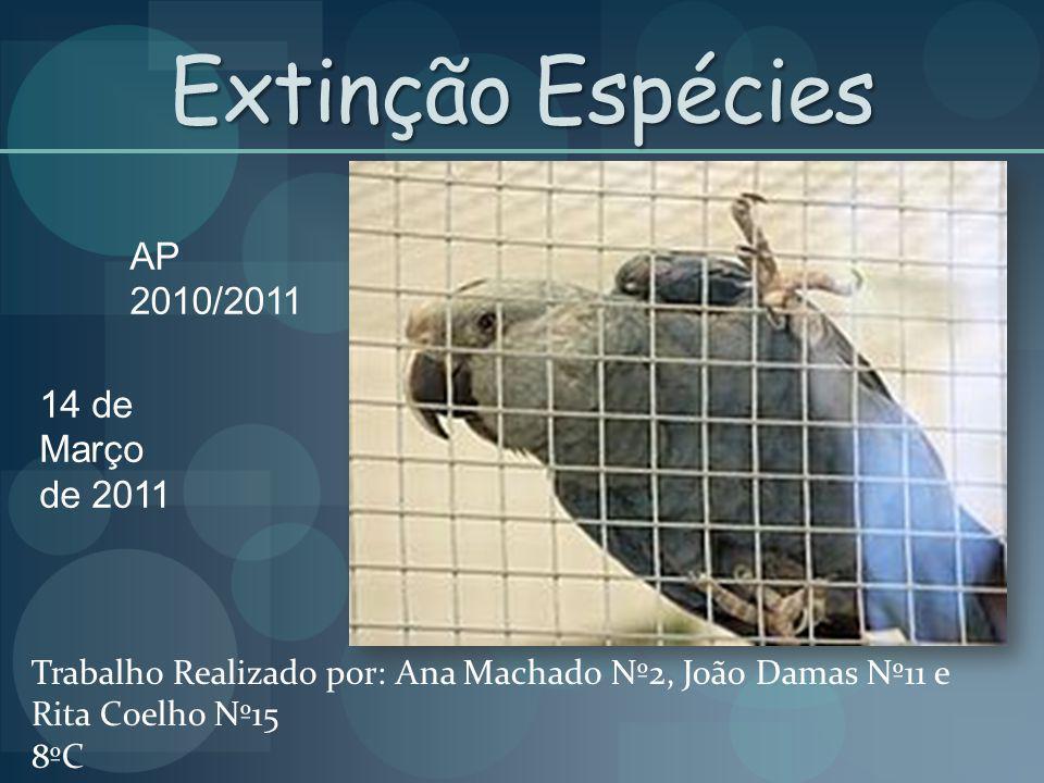 Extinção Espécies AP 2010/2011 14 de Março de 2011