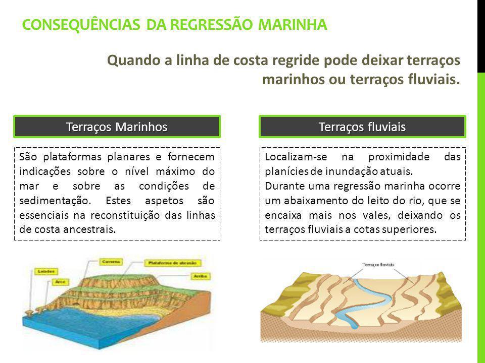 Consequências da regressão marinha