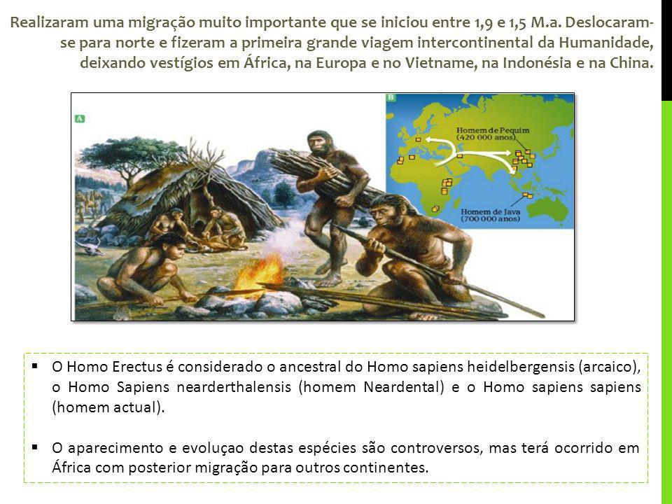 Realizaram uma migração muito importante que se iniciou entre 1,9 e 1,5 M.a. Deslocaram-se para norte e fizeram a primeira grande viagem intercontinental da Humanidade, deixando vestígios em África, na Europa e no Vietname, na Indonésia e na China.