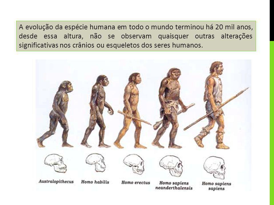 A evolução da espécie humana em todo o mundo terminou há 20 mil anos, desde essa altura, não se observam quaisquer outras alterações significativas nos crânios ou esqueletos dos seres humanos.