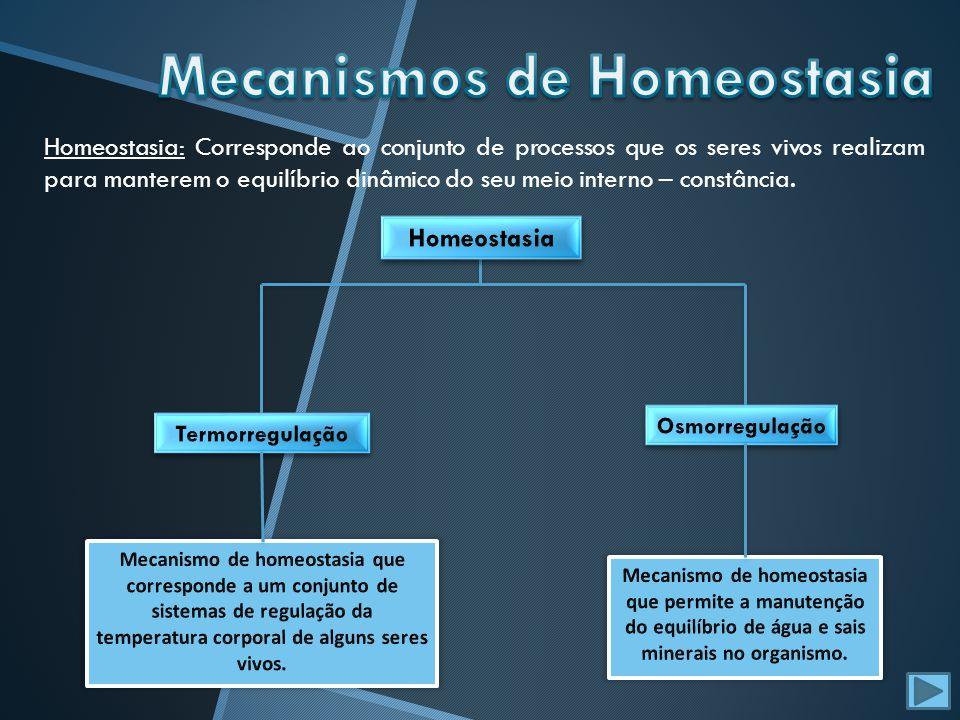 Mecanismos de Homeostasia