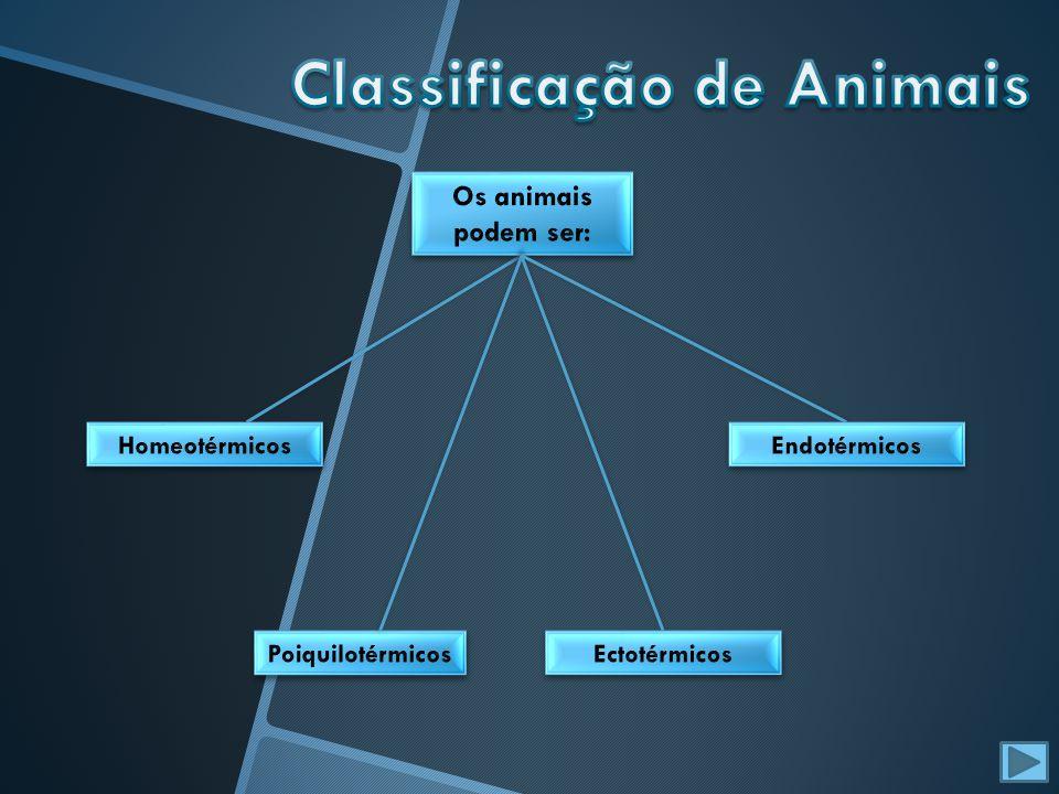 Classificação de Animais