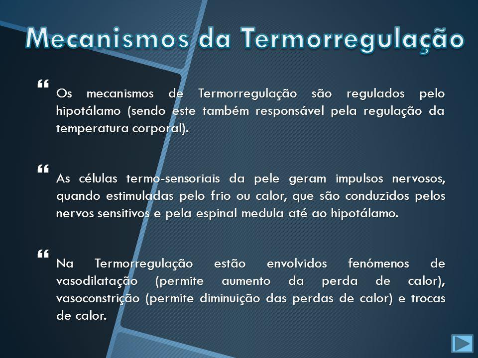 Mecanismos da Termorregulação