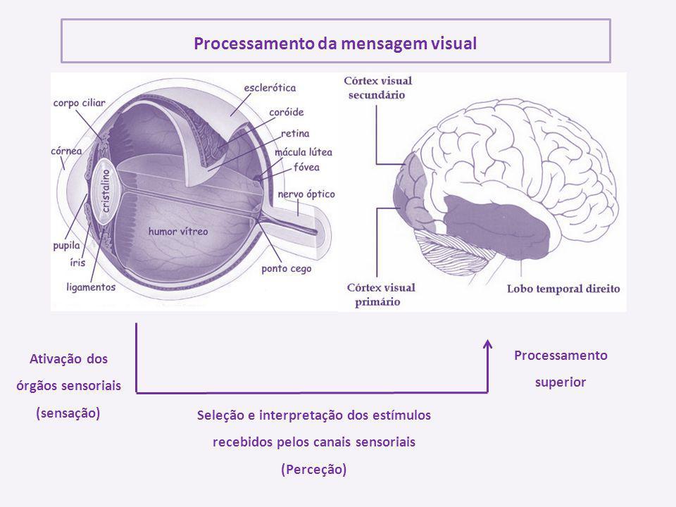 Processamento da mensagem visual