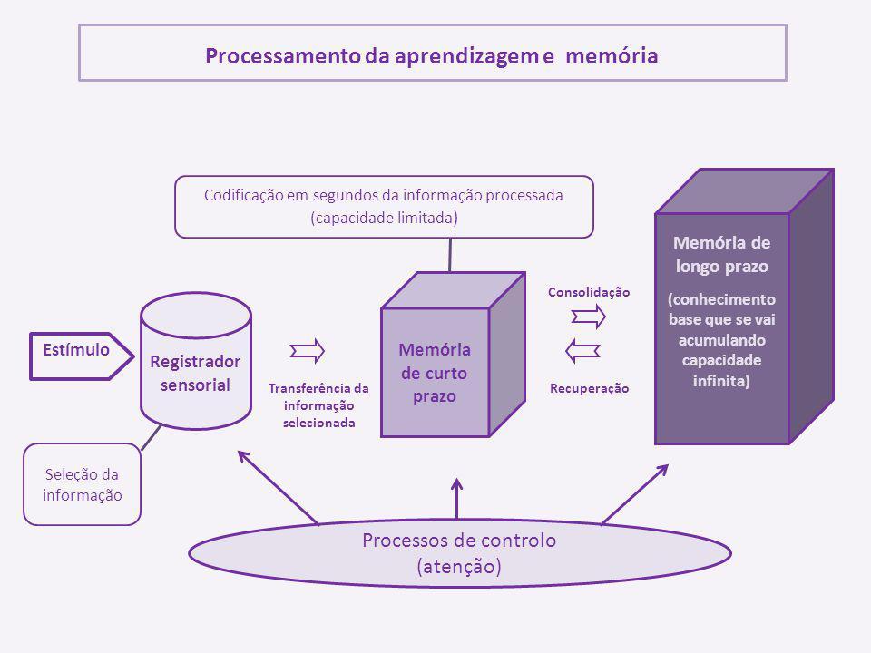Processamento da aprendizagem e memória