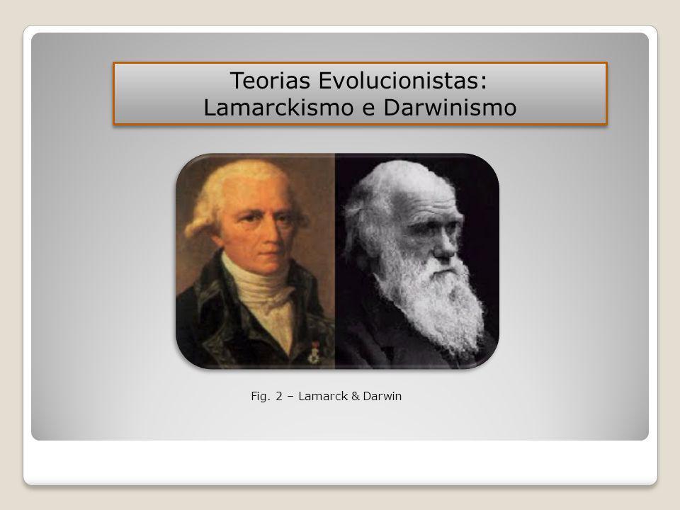 Teorias Evolucionistas: Lamarckismo e Darwinismo
