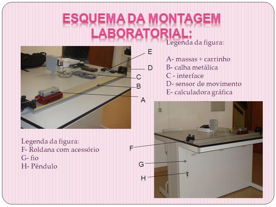 Esquema da montagem laboratorial: