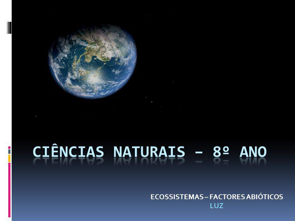 Ciências naturais – 8º ano