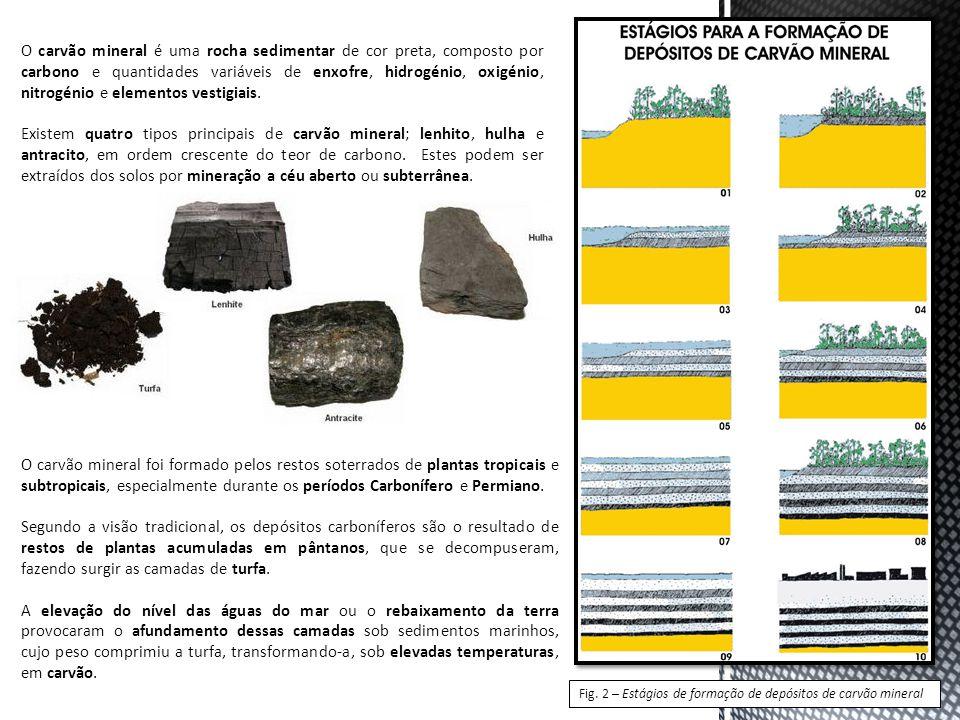 O carvão mineral é uma rocha sedimentar de cor preta, composto por carbono e quantidades variáveis de enxofre, hidrogénio, oxigénio, nitrogénio e elementos vestigiais.