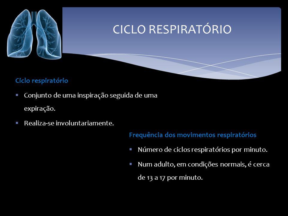 CICLO RESPIRATÓRIO Ciclo respiratório