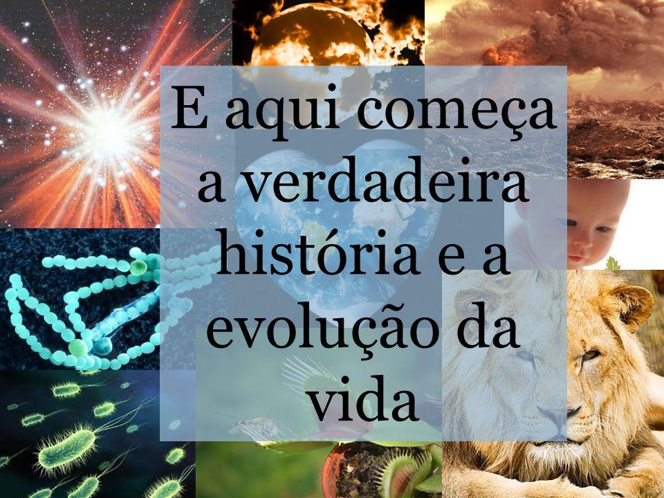 E aqui começa a verdadeira história e a evolução da vida