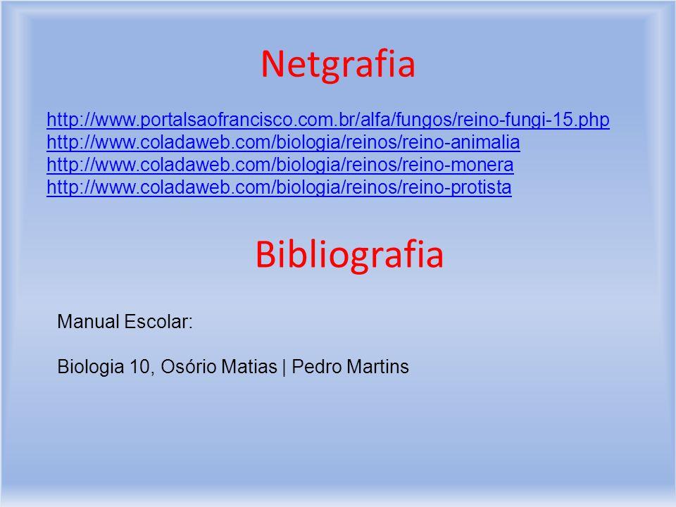 Netgrafia Bibliografia
