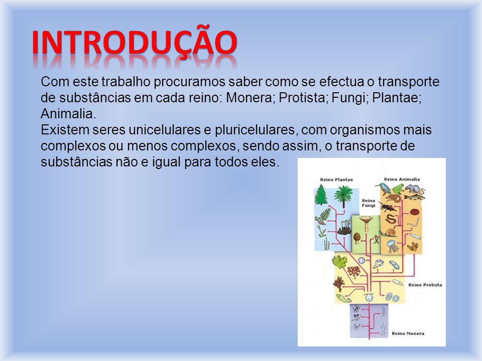 Introdução Com este trabalho procuramos saber como se efectua o transporte de substâncias em cada reino: Monera; Protista; Fungi; Plantae; Animalia.