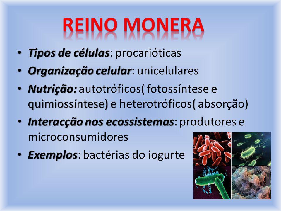 Reino monera Tipos de células: procarióticas