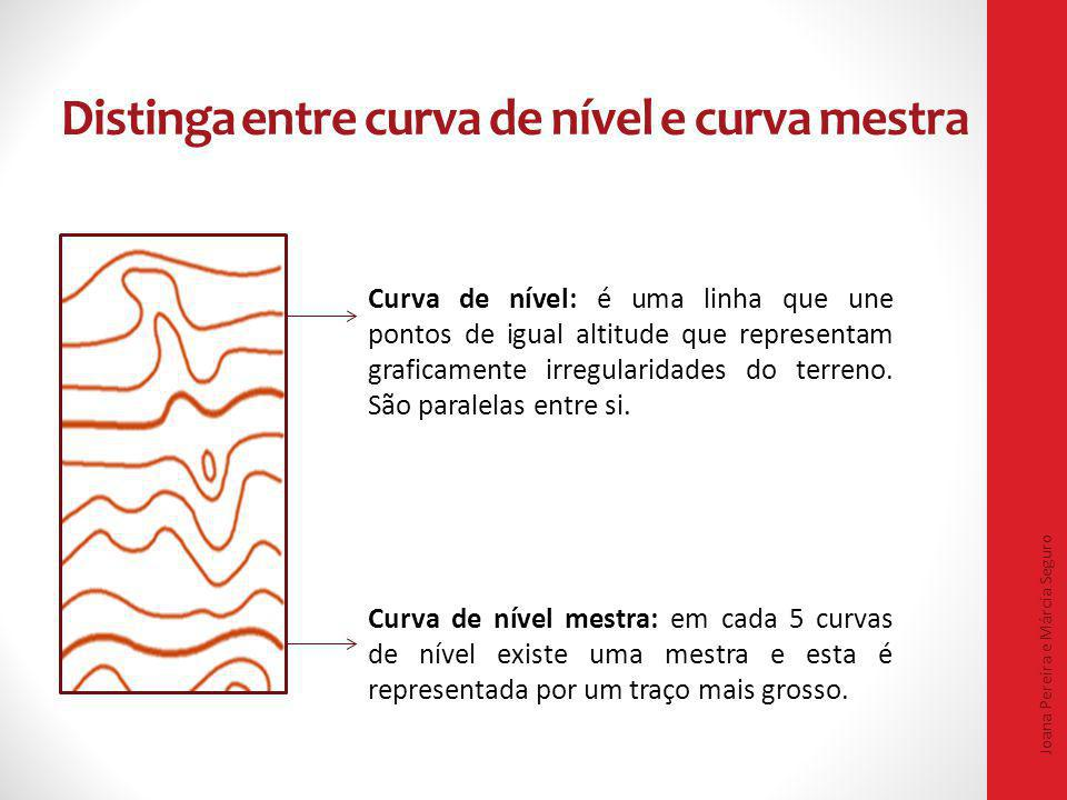 Distinga entre curva de nível e curva mestra