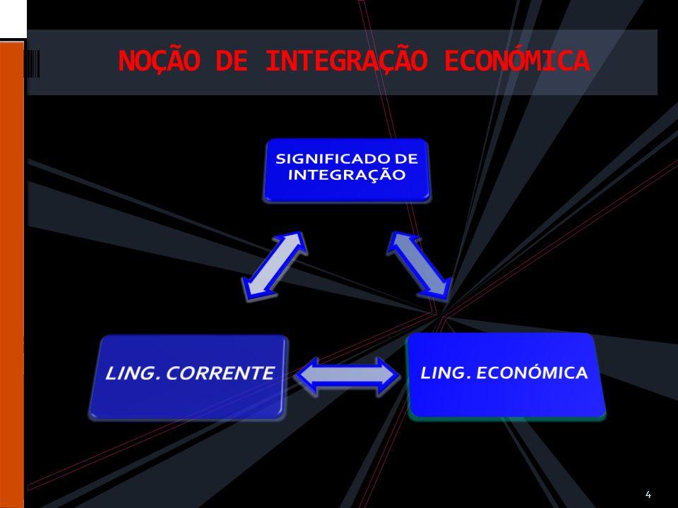 NOÇÃO DE INTEGRAÇÃO ECONÓMICA