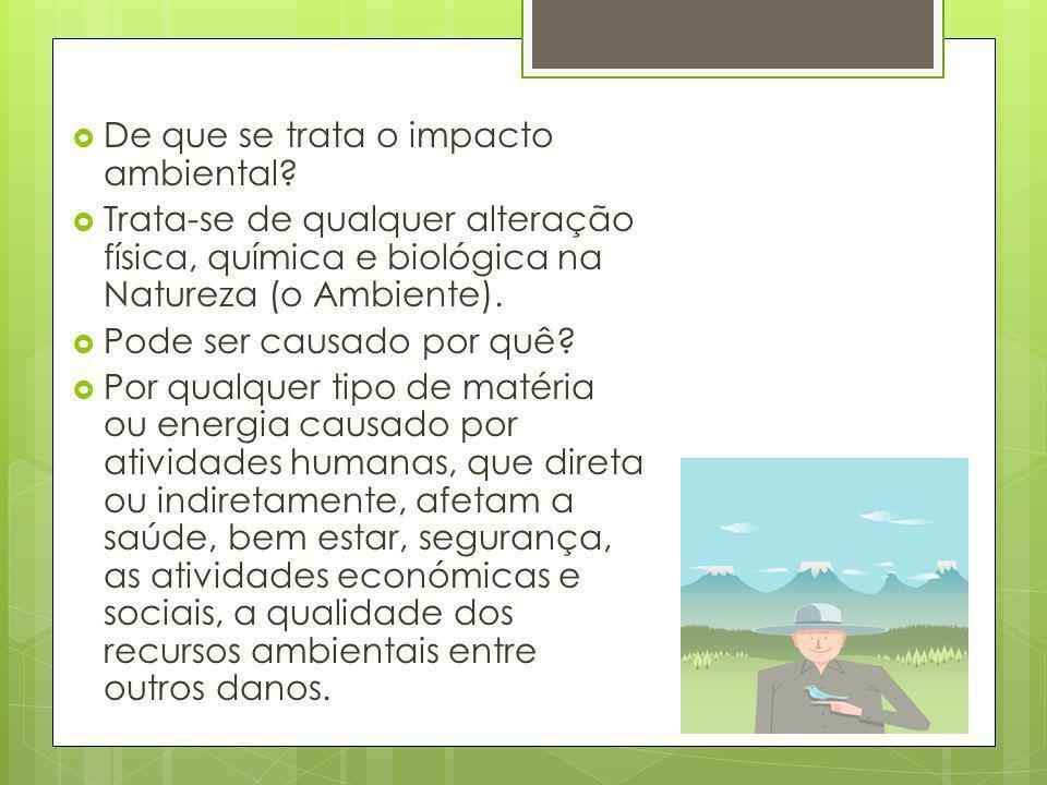 De que se trata o impacto ambiental