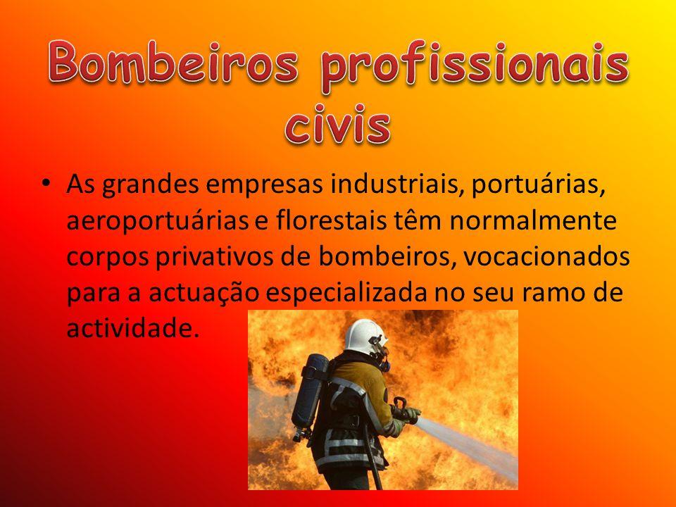 Bombeiros profissionais civis
