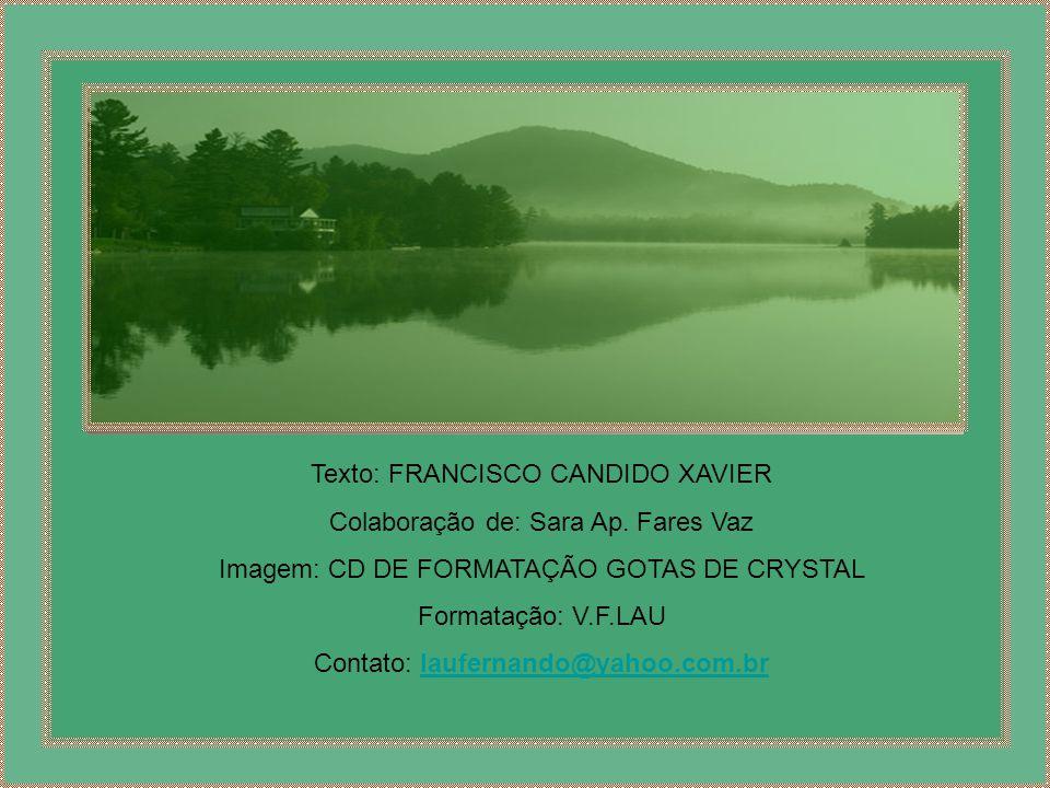 Texto: FRANCISCO CANDIDO XAVIER Colaboração de: Sara Ap. Fares Vaz