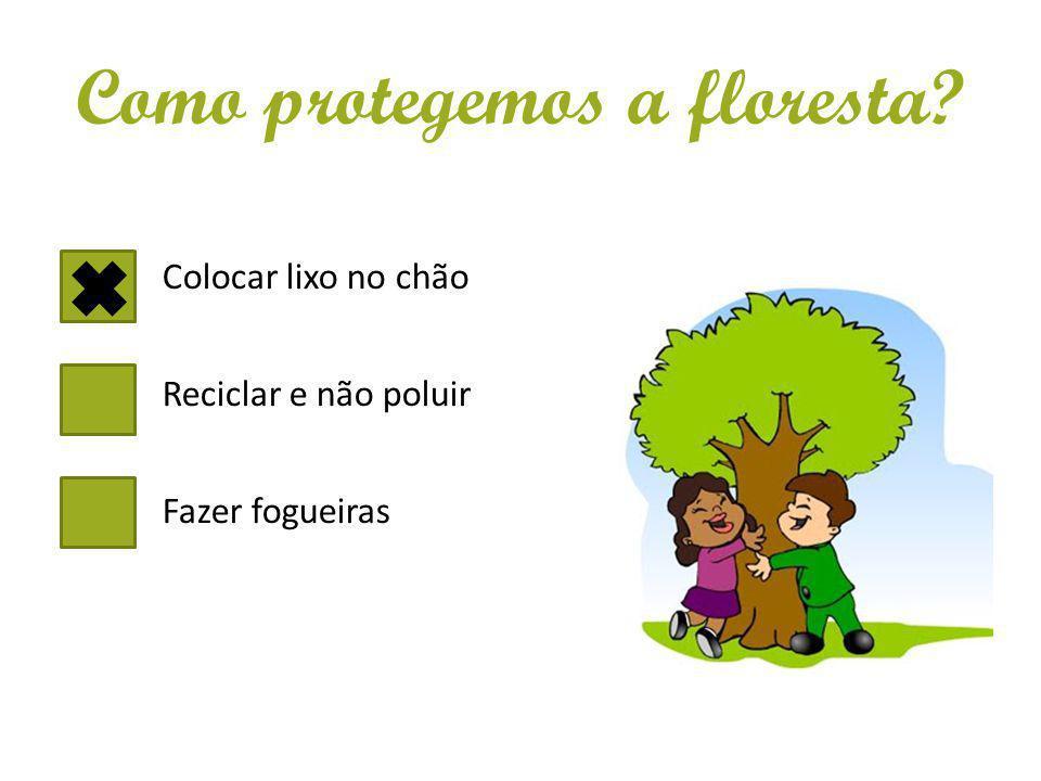 Como protegemos a floresta