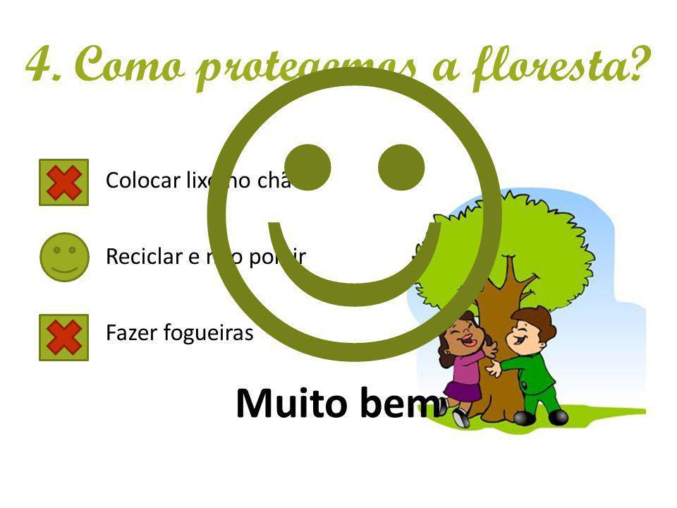 4. Como protegemos a floresta