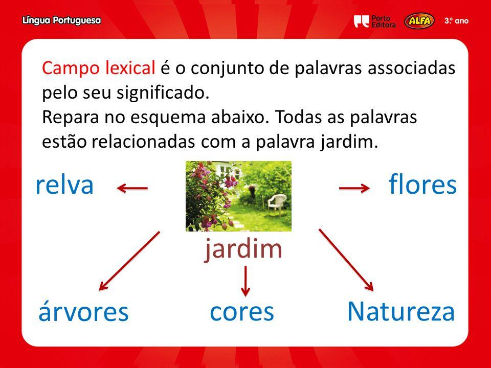 relva flores jardim árvores cores Natureza