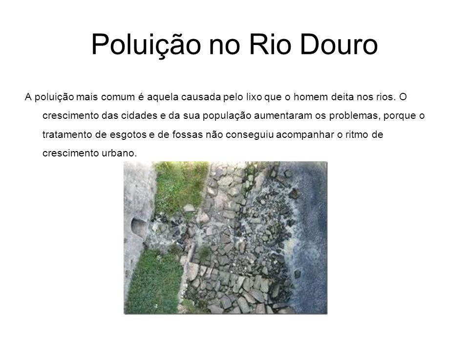 Poluição no Rio Douro