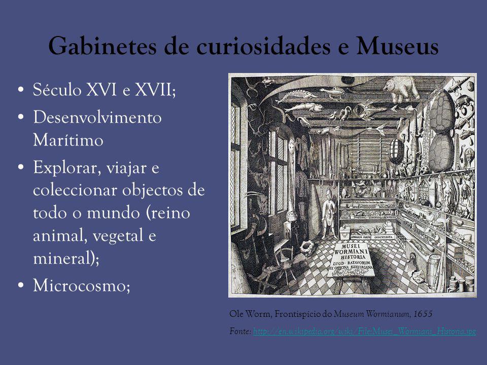 Gabinetes de curiosidades e Museus