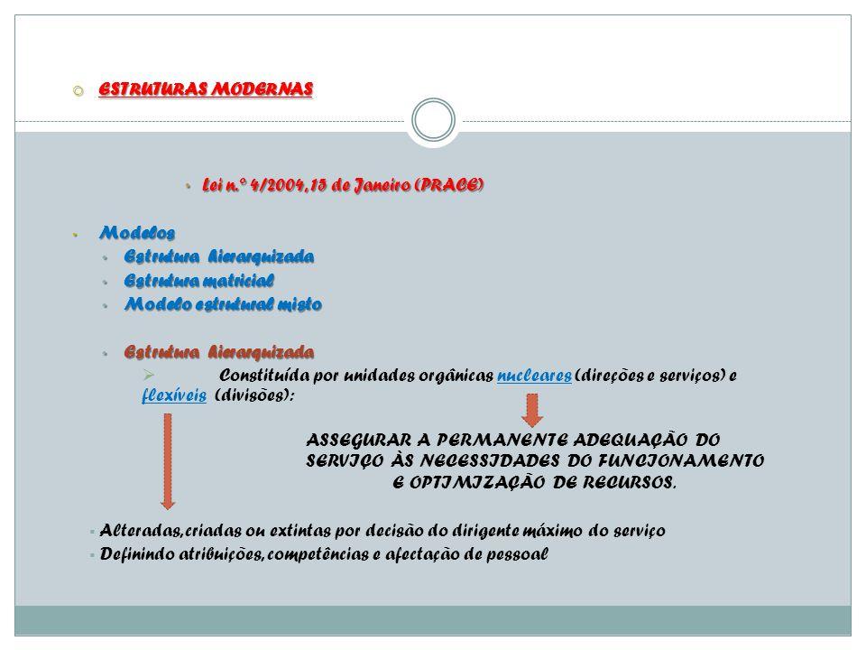 Lei n.º 4/2004, 15 de Janeiro (PRACE) Modelos Estrutura hierarquizada