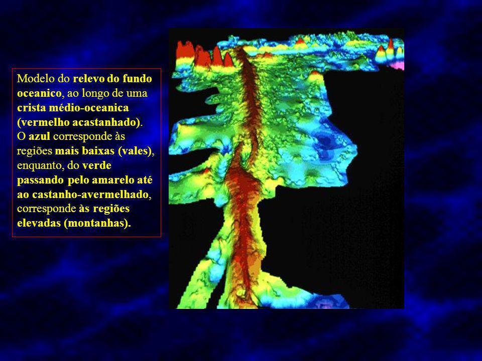 Modelo do relevo do fundo oceanico, ao longo de uma crista médio-oceanica (vermelho acastanhado).