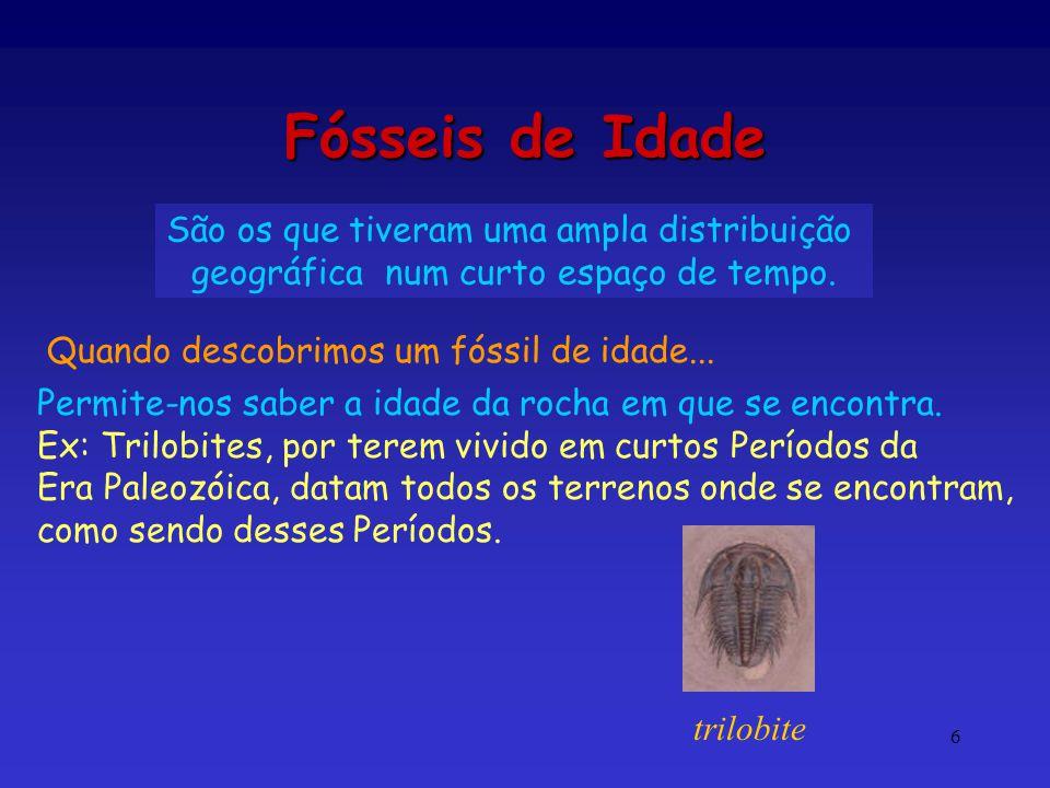 Fósseis de Idade São os que tiveram uma ampla distribuição