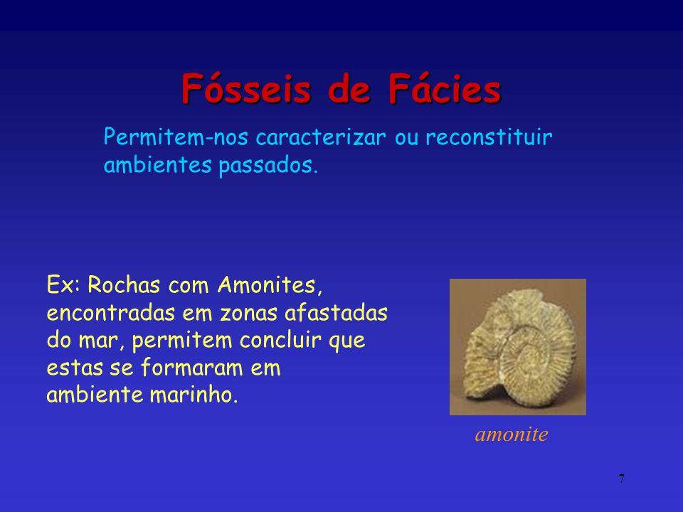 Fósseis de Fácies Permitem-nos caracterizar ou reconstituir ambientes passados. Ex: Rochas com Amonites, encontradas em zonas afastadas.