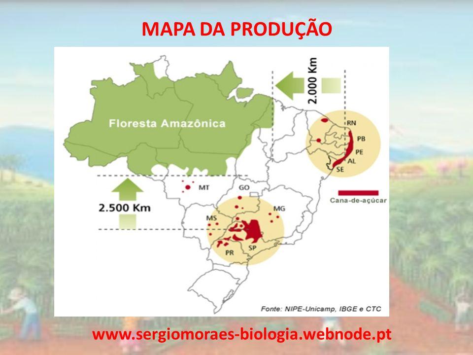 MAPA DA PRODUÇÃO www.sergiomoraes-biologia.webnode.pt