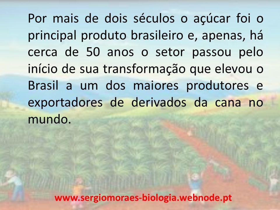 Por mais de dois séculos o açúcar foi o principal produto brasileiro e, apenas, há cerca de 50 anos o setor passou pelo início de sua transformação que elevou o Brasil a um dos maiores produtores e exportadores de derivados da cana no mundo.