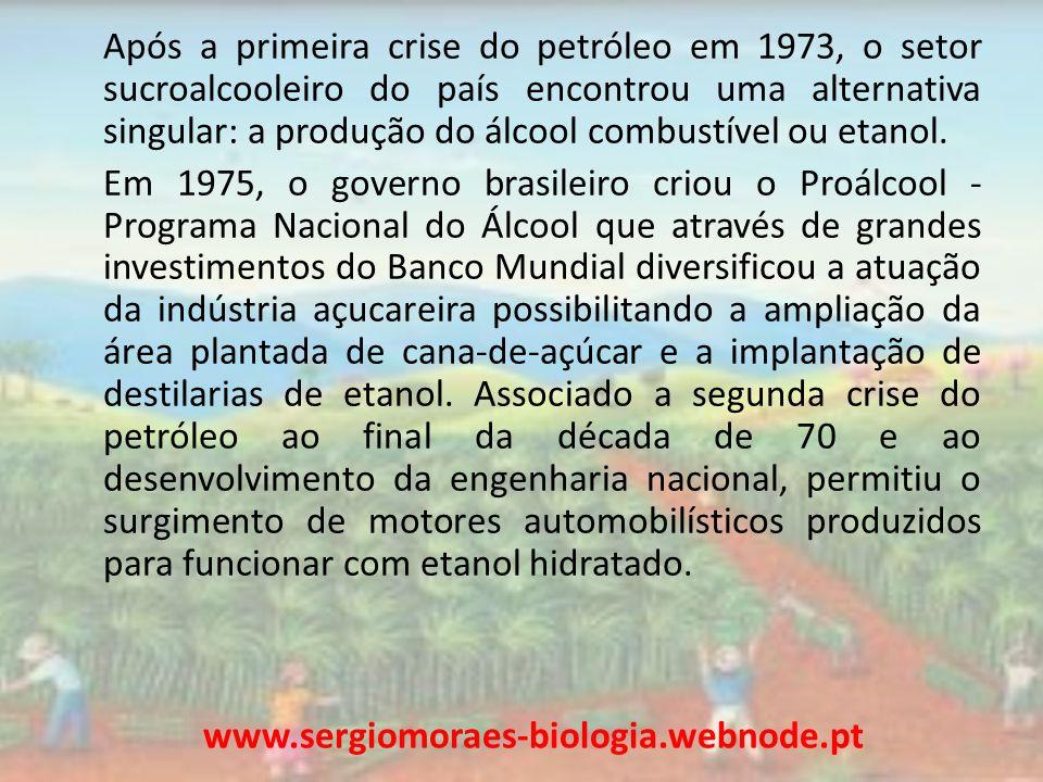 Após a primeira crise do petróleo em 1973, o setor sucroalcooleiro do país encontrou uma alternativa singular: a produção do álcool combustível ou etanol.