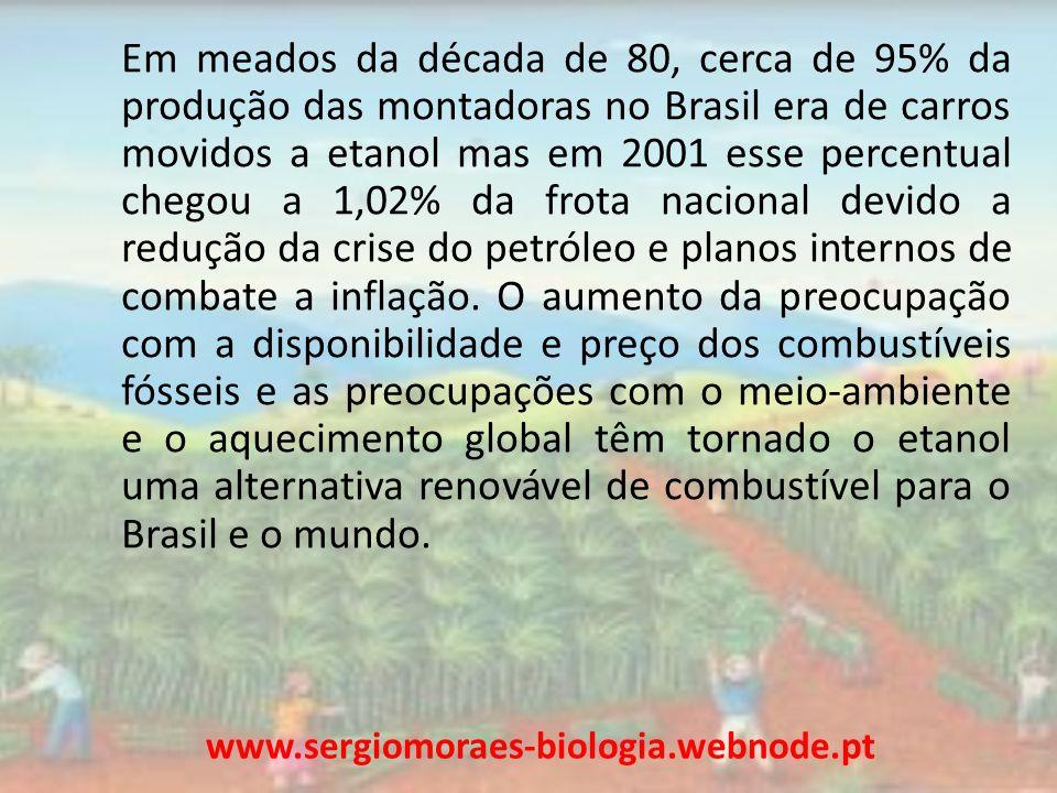 Em meados da década de 80, cerca de 95% da produção das montadoras no Brasil era de carros movidos a etanol mas em 2001 esse percentual chegou a 1,02% da frota nacional devido a redução da crise do petróleo e planos internos de combate a inflação. O aumento da preocupação com a disponibilidade e preço dos combustíveis fósseis e as preocupações com o meio-ambiente e o aquecimento global têm tornado o etanol uma alternativa renovável de combustível para o Brasil e o mundo.
