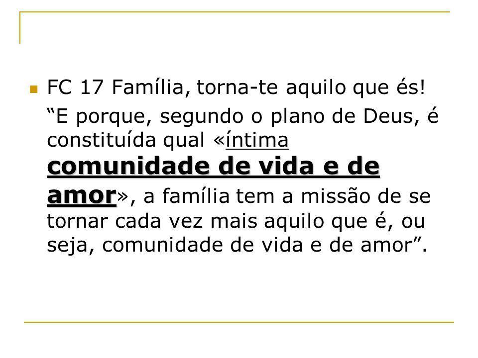 FC 17 Família, torna-te aquilo que és!