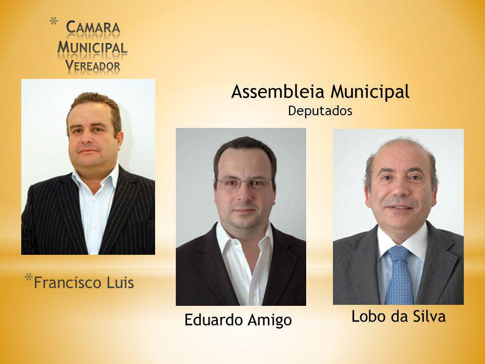 Camara Municipal Vereador