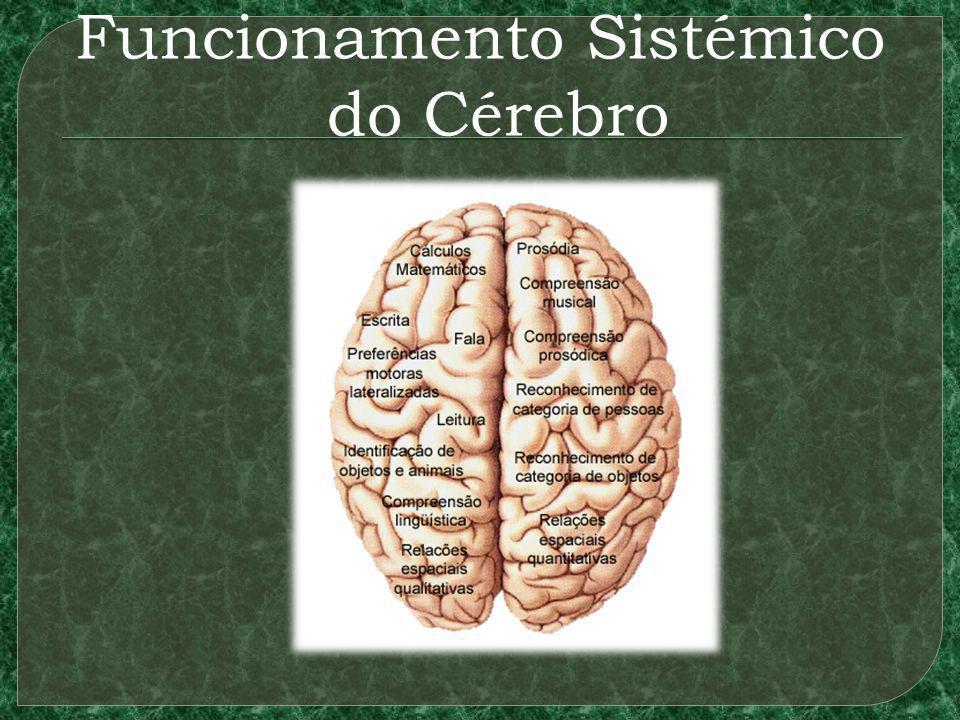 Funcionamento Sistémico do Cérebro