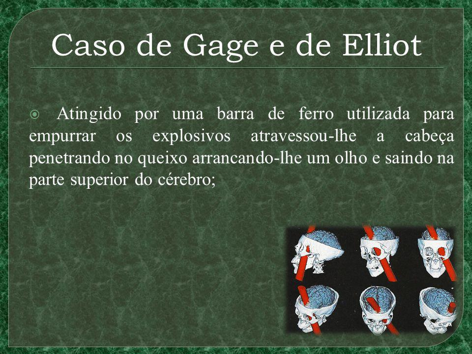 Caso de Gage e de Elliot