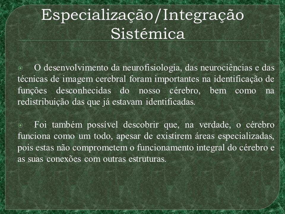 Especialização/Integração Sistémica