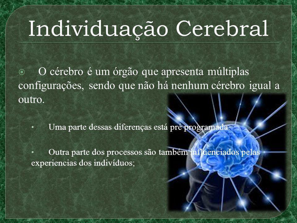 Individuação Cerebral